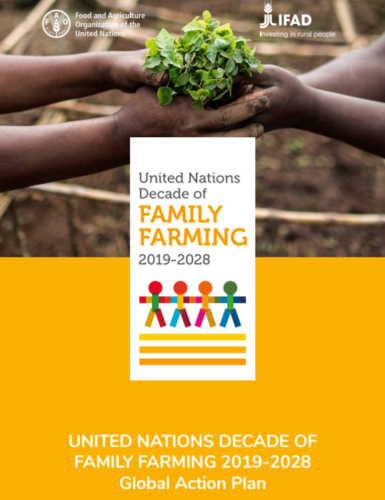 UN launched Global Action Plan for Decade of Family Farming