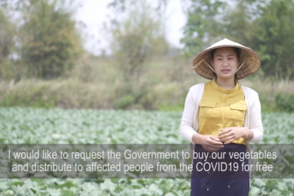 Impact of COVID-19 for small holder farmers in Laos