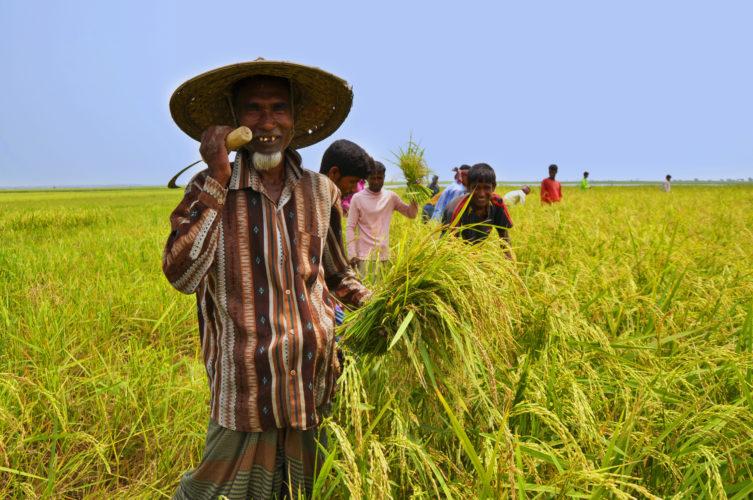 Mobile phone's usefulness among farmers in Southern Bangladesh