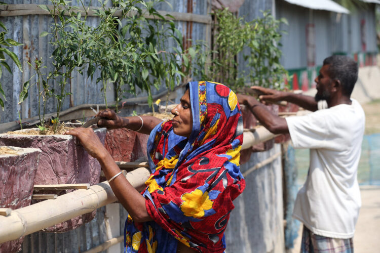 Farmers in Bangladesh favor TV programs as source of agricultural information