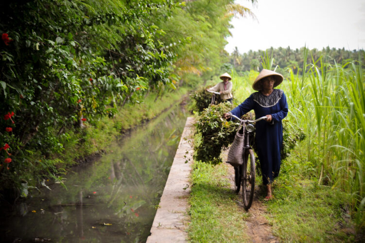 High media use for agricultural activities among crop farmers in Yogyakarta