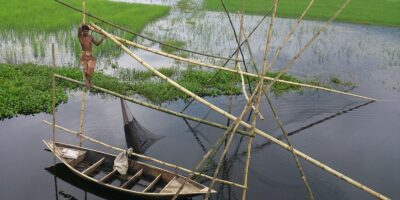 Negative Impact of COVID-19 on Global Fisheries and Aquaculture Food Systems